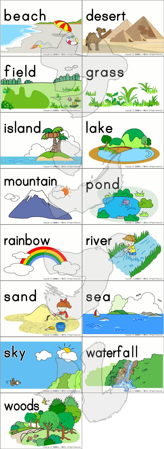 自然のカード15種